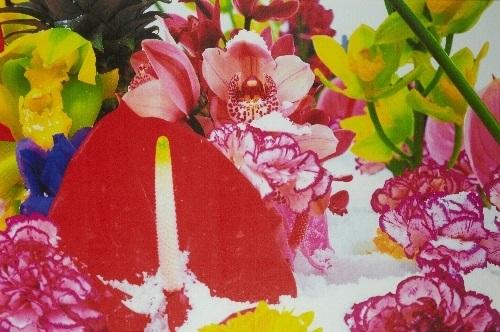 winter garden 6 by marc quinn