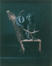 elks club by william wegman