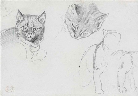 two studies of a cats head with subsidiary sketches of a seated cat by eugène delacroix