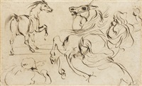 studies of a moorish horseman and his horse by eugène delacroix