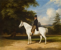 a country squire on his grey hunter by william barraud