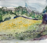 buttercup field, wensleydale (+ field of sunflowers - south of france; 2 works) by norman adams