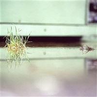 untitled 09 by daniel holfeld