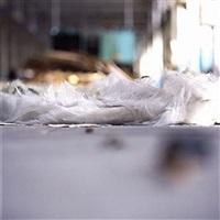 untitled 02 by daniel holfeld