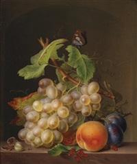 stillleben mit weintrauben, aprikose, pflaumen und schmetterling by moritz tettelbach