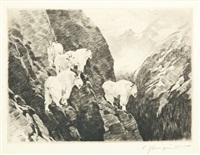 goats by carl clemens moritz rungius