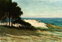 sand dune, carmel by william adam