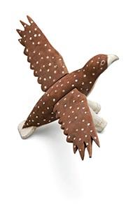 sea hawk by jubilee wolmby