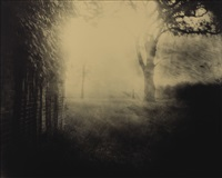 untitled (deep south # 41) by sally mann