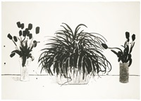 two vases of cut flowers and a liriope plant by david hockney
