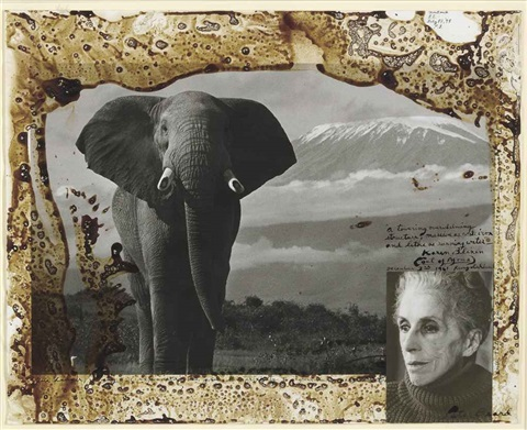 elephant karen blixen by peter beard