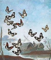 Envol de papillons sur la rivière