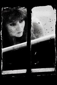 de la série window by merry alpern