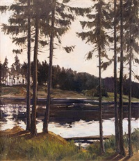 fichten am waldsee by lois alton