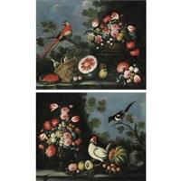 natura morta con fiori, frutta e uccelli (+ another; pair) by giuseppe pesci