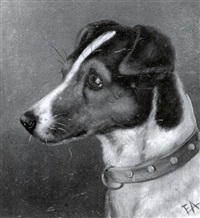 head of a smooth fox terrier (+ head of a wirehaired fox terrier; 2 works) by edward aistrop