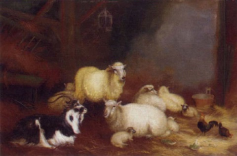 sheep chickens and a goat in a barn by a jackson