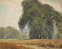 live oak trees by karl albert