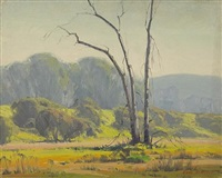 sycamore trees in arroyo seco by karl albert