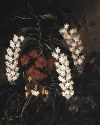 still life with flowers and an orchid by a. augusta