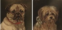 study of a pug (+ study of a scottish terrier; pair) by edward aistrop
