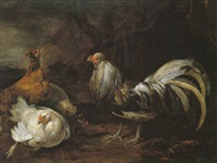 a farmyard with poultry feeding by abraham de haen the elder