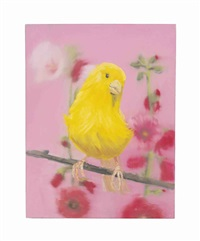 yellow canary (on pink) by ann craven