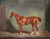 a chestnut hunter in a stable by james (of bath) loder