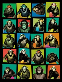 monkey with masks, new york city by albert watson