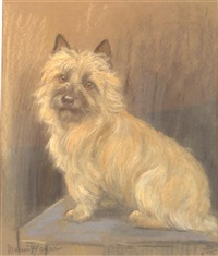 terrier (study) by marion rodger hamilton harvey