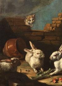 gallinacei e conigli rimirati da un gatto (+ porcellini d'india, capretta e piccioni novelli; 2 works) by giovanni agostino (abate) cassana
