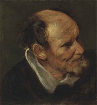 study of a head of a man by sir anthony van dyck