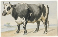 farmyard animals and birds including a pair of bantam hens, a friesian bull and a crow (5 works) by aert schouman