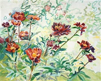 floral study by edith grace coombs