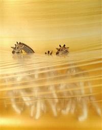 giraffe by boyd webb