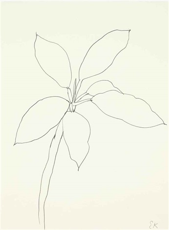 tropical plant st martin by ellsworth kelly