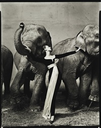 dovima with elephants, evening dress by dior, cirque d'hiver, paris, august by richard avedon