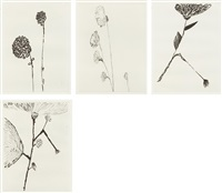 homely girl, a life, volume i: plates 2; 4; 6; and 7 (4 works) by louise bourgeois
