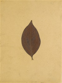 persimmon ii by joseph beuys