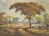 dust track running through a bush landscape by piet van emmenis