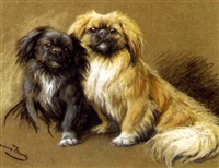 two pekinese by fannie moody