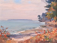 coastal view by manly edward macdonald