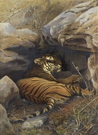 a lying tiger (+ platinum print; 2 works) by william willoughby hooper