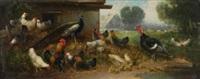 hühnerhof mit pfau und truthahn by otto scheuerer