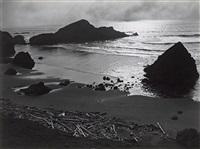 oregon coast, 1939 by edward weston