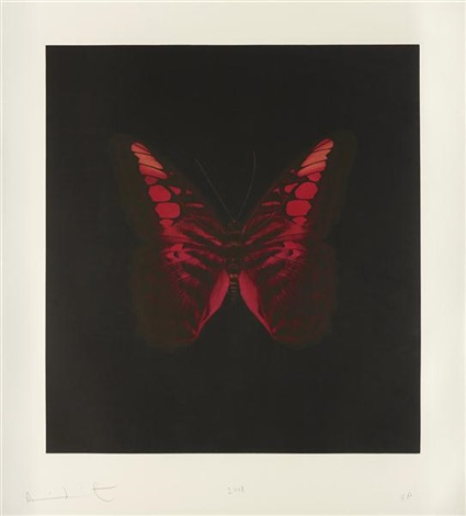 a single unique butterfly from the souls on jacobs ladder take their flight by damien hirst