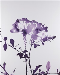 #012 by james welling