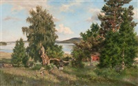 a summer day in the archipelago by fredrik ahlstedt