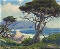 cypress tree, 17 mile drive, monterey by arthur hill gilbert