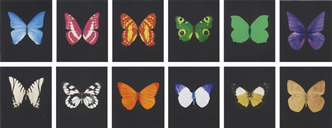 butterfly etching (portfolio of 12) by damien hirst